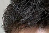 ウエンツ瑛士の現在にハゲた疑惑が急浮上?ハーフ顔に似合う髪型に染めたのか白髪なのかも調査!