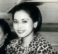 デヴィ夫人の若い頃から現在を画像で比較!ハーフのモデル顔が美しいしすっぴん画像もきれいすぎ?