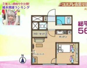 コスプレイヤーえなこの年収はいくら?自宅の画像が衣装部屋みたいですごすぎ!